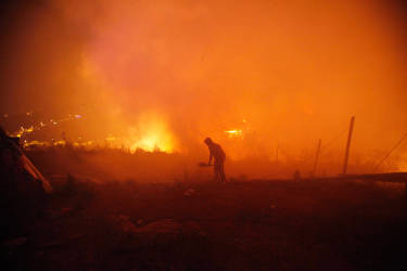 A person helps to extinguish flames as a large forest fire reaches urban areas in Valparaiso, Chile, Sunday April 13, 2014. Authorities say the fires have destroyed hundreds of homes, forced the evacuation of thousands and claimed the lives of at least seven people.  ( AP Photo/ Luis Hidalgo)