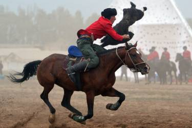 A Kyrgyz rider plays the traditional Central Asian sport Buzkashi also known as Kok-Boru or Oglak Tartis in the first World Nomad Games in Cholpon-Ata, some 270 km from Bishkek on September 11, 2014 . Mounted players compete for points by throwing a stuffed sheepskin into a well.  Teams of Azerbaijan, Kazakhstan, Belarus, Mongolia and Tajikistan take part in the games. AFP PHOTO / VYACHESLAV OSELEDKO